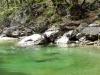 Čudovita reka Iška spomladi 2014. Foto: Hany Bany.