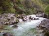 Jesen ob reki Iški