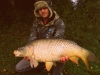 Lep krap iz jezera Rakitna, 73 cm, 7 kg. Oktober 2013. C&R!